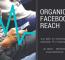 Organisk Rekkevidde På Facebook